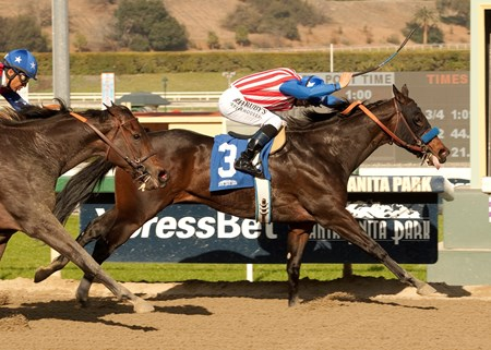 Awesome Baby and Mike Smith take the Grade II $200,000 Santa Ynez Stakes at Santa Anita Park in Arcadia, California.