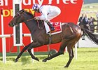 "Trading Leather comes home strong to win the Dubai Duty Free Irish Derby.<br><a target=""blank"" href=""http://photos.bloodhorse.com/AtTheRaces-1/at-the-races-2013/27257665_QgCqdh#!i=2604586004&k=Qm5sS3C"">Order This Photo</a>"