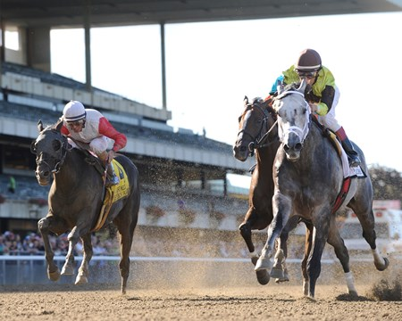 In his first start back from injury, Graydar spurted to the early lead and held on to win the $400,000 Kelso Handicap (gr. II) by three-quarters of a length over Brujo de Olleros Sept. 28 at Belmont Park.
