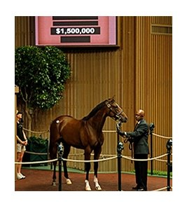 Hip 19, a filly by Medaglia d'Oro out of Flying Passage, sold for $1.5 million.