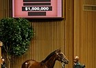 Medaglia d'Oro Filly Sells for $1.5 Million
