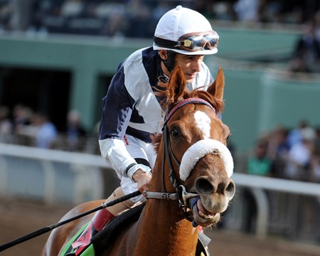 Main Sequence wins the Breeders' Cup Turf (gr. I).