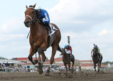 Heliskier wins The 10,000 Lakes Stakes opening weekend at Canterbury Park in Shakopee, Minnesota on May 18, 2013.