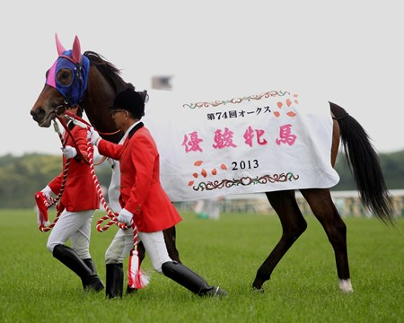 Meisho Mambo after winning the Yushun Himba (Jpn-I, Japanese Oaks) at Tokyo Racecourse on May 19, 2013. Photo by: Masakazu Takahashi
