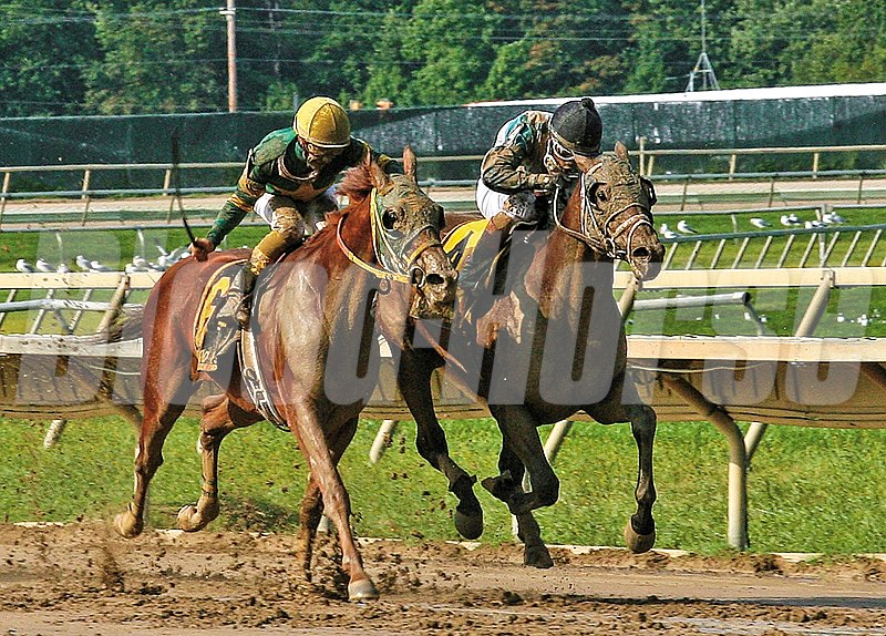 Eldaafer #4 with Ricardo Santana Jr. riding won the $200,000 Greenwood Cup at Parx Racing in Bensalem, PA.