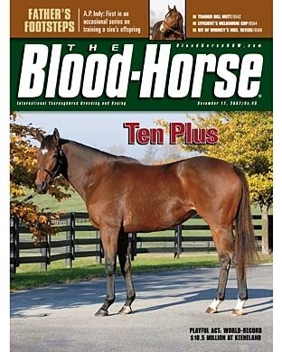 The Blood-Horse: 11/17/2007 issue