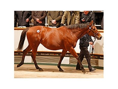 Immortal Verse sold for 4.7 million guineas on December 3.