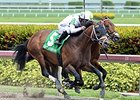 "Commissioner gets by Sr. Quisqueyano to win the Skip Away.<br><a target=""blank"" href=""http://photos.bloodhorse.com/AtTheRaces-1/At-the-Races-2015/i-wsH5t8K"">Order This Photo</a>"