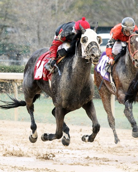 Mallard's Bro takes the Arkansas Breeders' Stakes at Oaklawn Park.