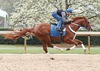 Bold Conquest Works for Arkansas Derby