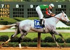 Halo America wins 1997 Apple Blossom Handicap.