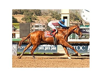 Dortmund cruises to victory in the Santa Anita Derby.
