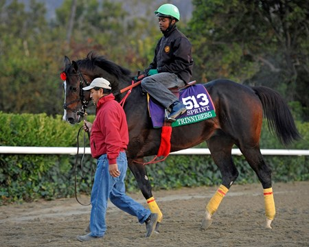 Caption:  Trinniberg