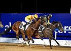 Reynaldothewizard (outside) wins the 2015 Al Shindagha Sprint at Meydan Racecourse.