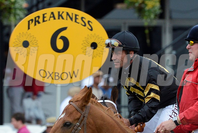 Oxbow with Gary Stevens aboard won the 138th running of the Preakness Stakes at Pimlico in Baltimore, Maryland May 18, 2013.