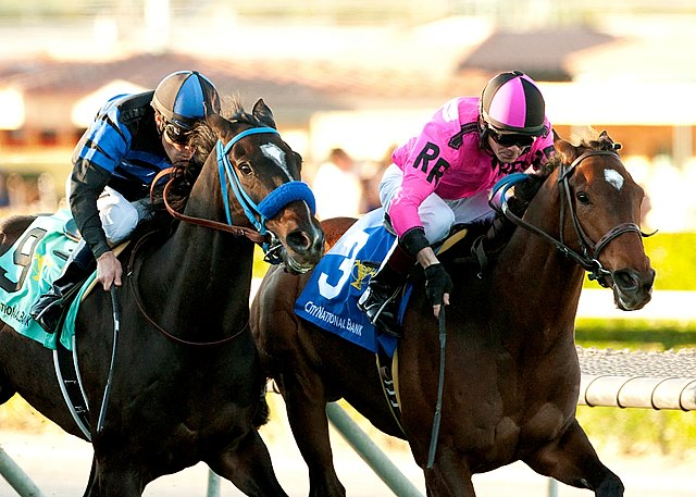 Alert Bay takes the California Cup Turf Classic Stakes over Boozer at Santa Anita Park in California.