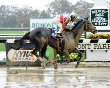 "Hymn Book wins the Frank ""Pancho"" Martin Stakes Jockey: Joel Rosario BELMONT PARK, Elmont, NY Purse: $85,000 Date: October 19, 2012 Class: TV: HRTV/TVG Age: 3 yo's & up Race: 3 Distance: One And One Sixteenth Miles Post Time: 1:54 PM"