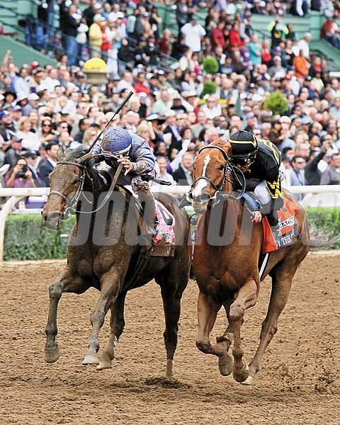 Judy the Beauty and jockey Mike Smith battle down the stretch to win the 2014 Breeders' Cup Filly & Mare Sprint at Santa Anita Park.