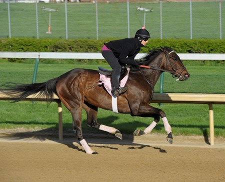 Close Hatches works at Churchill Downs on Sunday morning April 21 in preperation for the 2013 Kentucky Oaks.