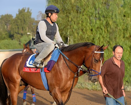 Caption:  Mr.Sexy