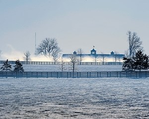 BRRRRRRR: Fog, snow, and bitter cold greeted farmers during the last week of January in Central Kentucky; pictured is Golden Age Farm.