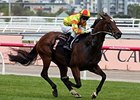 Lankan Rupee rolls to victory in the Black Caviar Lightning Stakes.
