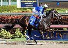 "Eskenformoney will face 13 in the Davona Dale Stakes on Feb. 21. <br><a target=""blank"" href=""http://photos.bloodhorse.com/AtTheRaces-1/At-the-Races-2014/i-hGs32ZF/A"">Order This Photo</a>"