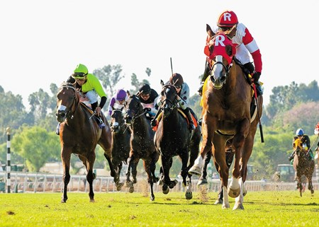 Luck of the Kitten and jockey Corey Nakatani leave the rest of the field behind in the $100,000 Zuma Beach Stakes at Santa Anita Park.