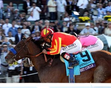 Secret Circle Horse Profile Bloodhorse