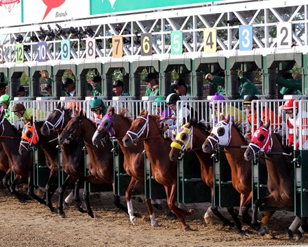 California Chrome and the rest of the field leave the starting gate for the 140th running of the Kentucky Derby.