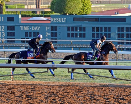 Caption:  r-l, Telescope followed by Dank