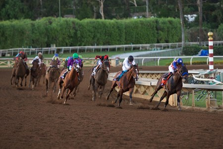 Bayern and Martin Garcia (right) lead the field around the final turn of the Breeders' Cup Classic (gr. I).