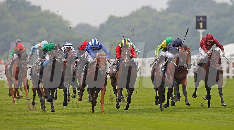 Declaration Of War (Joseph O'Brien and Navy Blue Color) defeats Aljamaaheer (blue and white stripes). Animal Kingdom tailed off (extreme left in red and green colors) during the Queen Anne Stakes June 18, 2013.