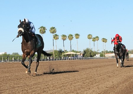 Lazy Daisy May takes the ATBA Fall Sales Stakes Fillies Division at Turf Paradise  in Phoenix, Arizona.