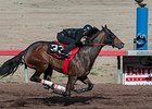 Barretts Holds 2-Year-Olds Under-Tack Preview