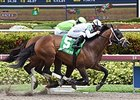 Commissioner Heads Hawthorne Gold Cup