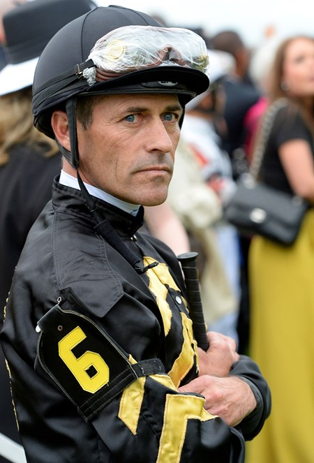 Caption:   Stevens all business in saddling area.  Oxbow with Gary Stevens wins the Preakness (gr. I) Preakness week 2013 with Preakness horses and other going to the track at Pimlico on May 18, 2013, in Baltimore, Md. PREAKNESS R12 Preakness