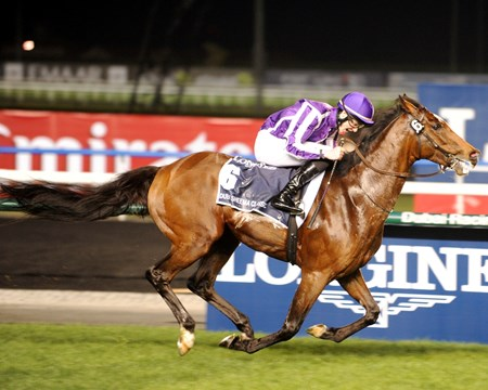 St Nicholas Abbey winning the $5 million Dubai Sheema Classic.