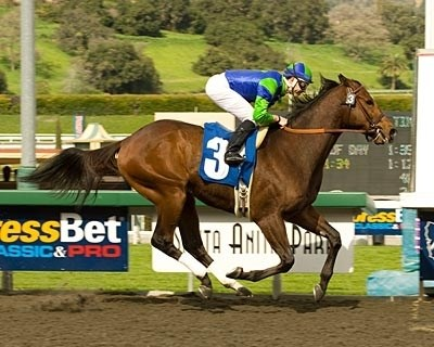 Rail Trip defeated Booyah by 1 3/4 lengths to win Friday's $58,800 feature at Santa Anita and remain undefeated in four races.