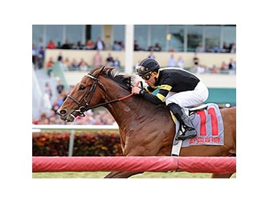 "Long On Value won the 2015 Canadian Turf.<br><a target=""blank"" href=""http://photos.bloodhorse.com/AtTheRaces-1/At-the-Races-2015/i-p72F9n5"">Order This Photo</a>"