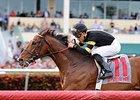 Long On Value Seeks Repeat in Canadian Turf