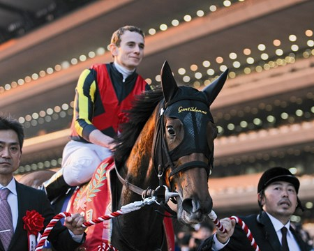 In an exhilarating finish to the 33rd renewal of the Japan Cup (Jpn-I), filly Gentildonna nosed out another filly, Denim and Ruby, Nov. 24, 2013 at Tokyo Race Course to become the first to win the prestigious event twice.