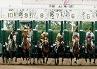 Holy Bull (far left) and Cigar (far right) break from the gate in the 1995 Donn Handicap.
