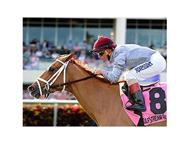 Sandiva winning last year's Suwannee River Stakes at Gulfstream