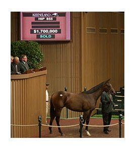 Hip 855, a half sister of Havre de Grace sold for $1.7 million.