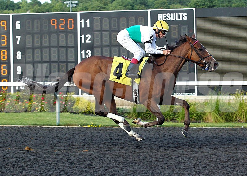 Cat's Holiday and jockey Mario G. Pino ride to victory in The Malvern Rose Stakes at Presque Isle Downs & Casino in Erie, Pennsylvania.