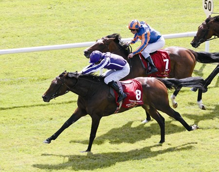 Aidan O'Brien's Treasure Beach, ridden by Colm O'Donoghue, wins the Dubai Duty Free Irish Derby from Seville June 26, 2011.