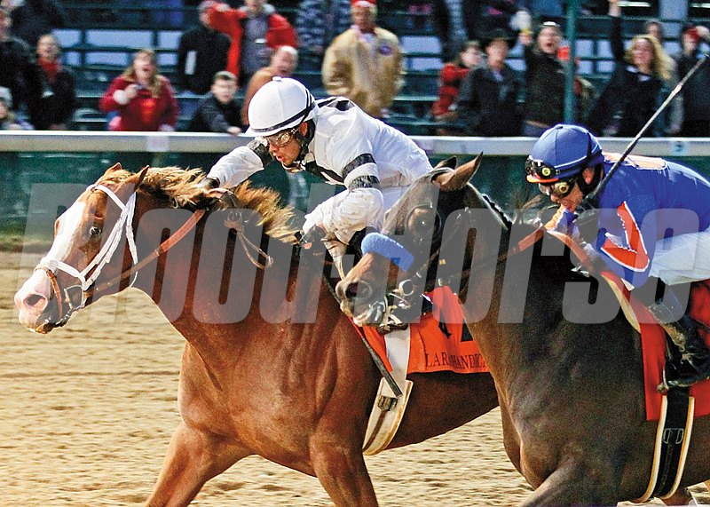 Will Take Charge and jockey Luis Saez win the Grade I Clark Handicap at Churchill Downs on November 29, 2013.