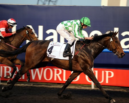 Lines of Battle running in the UAE Derby.