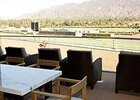 Slideshow: Santa Anita Track Renovations